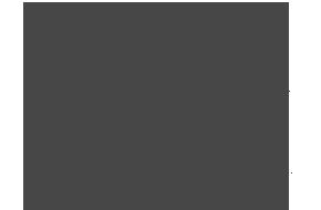 logo41_grey