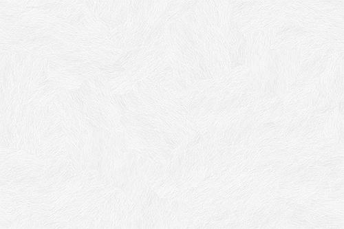 pattern-subtle_white_feathers